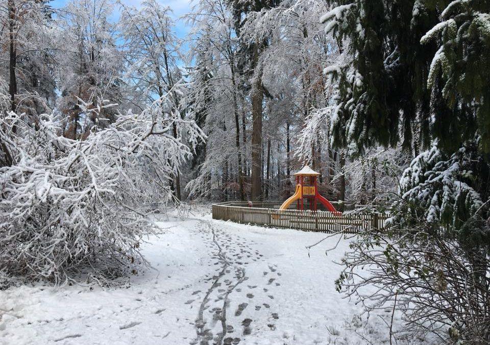 Projekt Waldpark-Geretsried